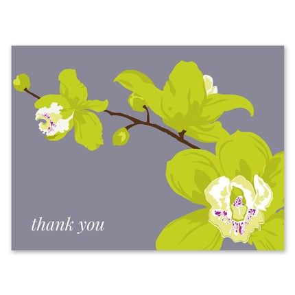 Orchid Note Card
