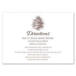Lolo Lincoln Wedding 124520 124455 Directions Card
