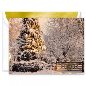 Snowy Tree Greeting Card
