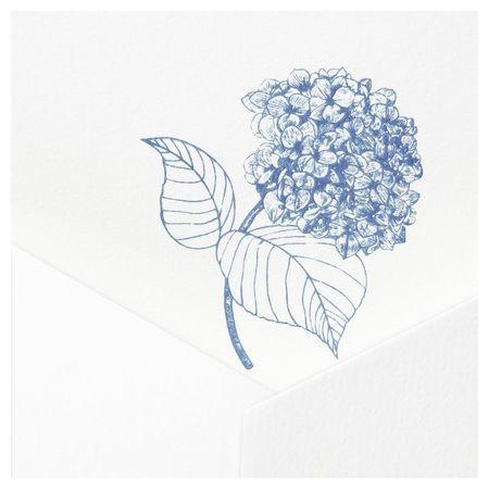 Hydrangea Note Card