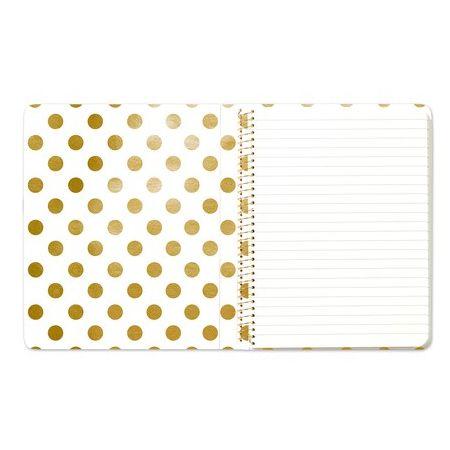 Curious Notebook