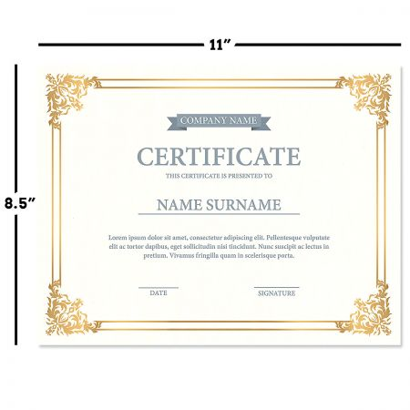 Empire Gold Certificate on White Parchment - Set of 25