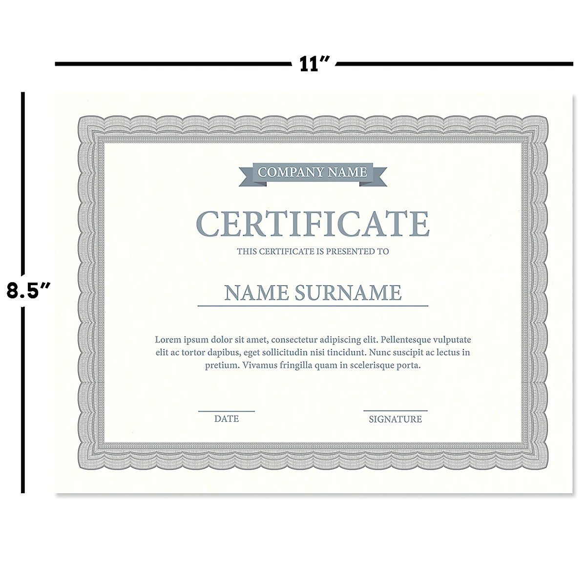 Executive Gray Certificate on White Parchment - Set of 100