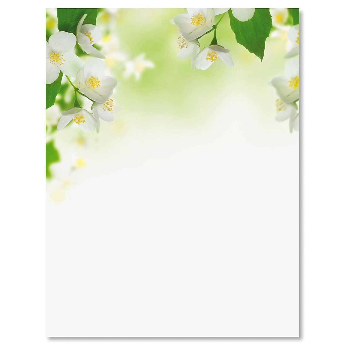 White Florals Letter Papers